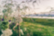 Sorori Riverside Shoot-77.jpg