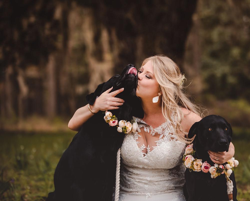 Beaufort Wedding Venues, Charleston Wedding Venues, Wedding Venues in Beaufort, Wedding Venues in Charleston, Wedding Venues in South Carolina, South Carolina Wedding Venue, Weddings, Wedding Venues, South Carolina Wedding