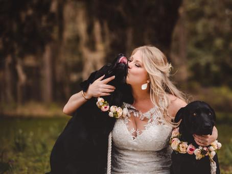 Wedding Wednesday: Pup Edition