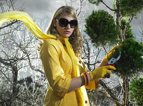 Joli jaune