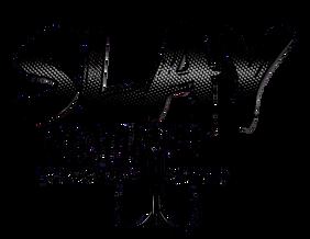 DARK SLAY LOGO.png