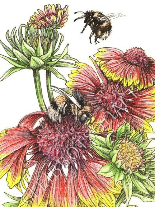 "5x7"" Giclee Art Print- Bees"