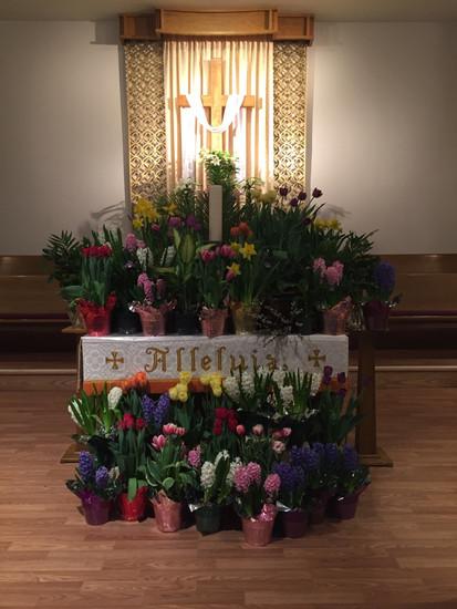 Easter SP 3.jpg
