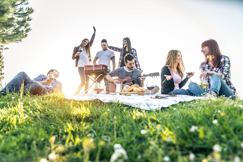 Group of friends having pic-nic in a par