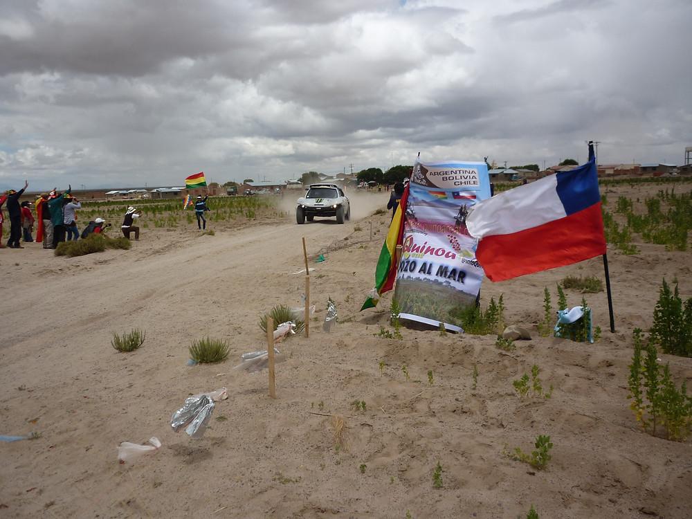 Dakar Quinoa 2.jpg