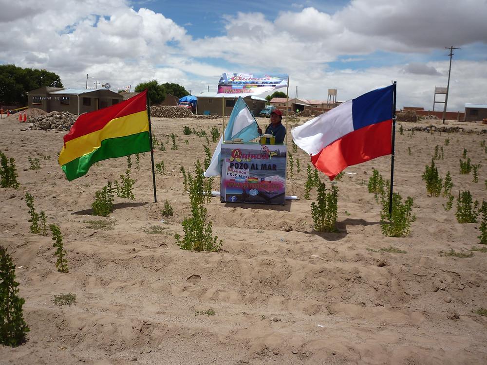 Bebidas Dakar.jpg
