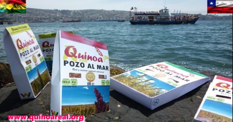 campaña_dia_del_mar.png