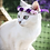Thumbnail: Purple Violet Cat Crown - Diadem for cats (and littledogs)