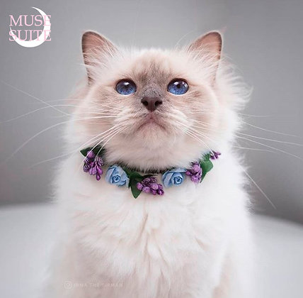 Cat crowns - diadem for cats - flower circlet for pets - light blue and purple