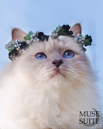 Cat crowns - diadem for cats - flower circlet for little pets -black and silver