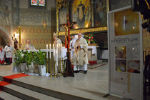The Guardian Angel: Eucharistic Miracle of Legnica, Poland, 2013