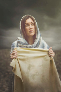 The Catholic Defender: Promises to those who honor the Face of Jesus