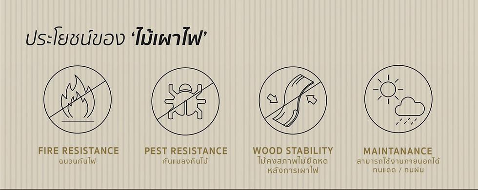 charredwood-ไม้เผาไฟ-02_edited_edited.png