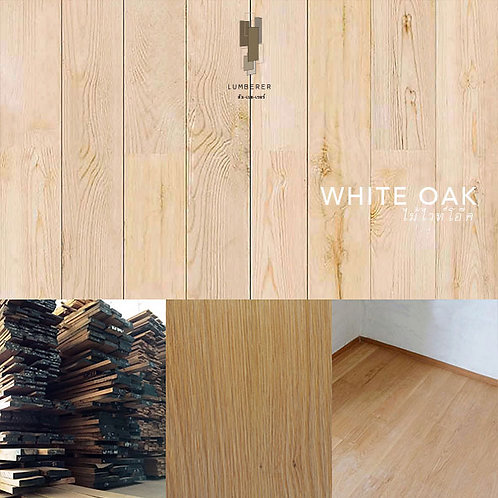 WHITE OAK [A] - ไม้ไวท์โอ๊ค
