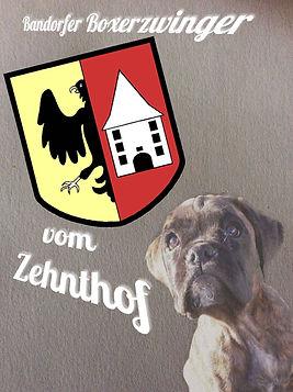 Zwinger 1.jpg