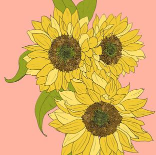 Sunflowers_colored.jpg