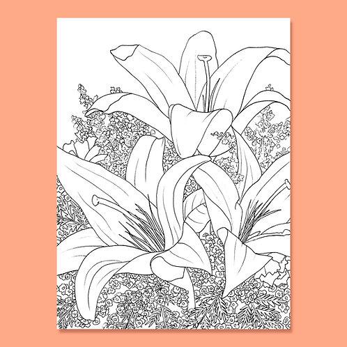 Lavish Lillies