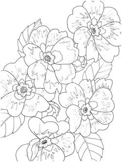 Five_flowers