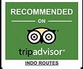 Agencia de operadores turísticos a medida