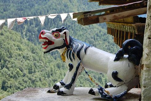 viaje completo a Bhután.jpg
