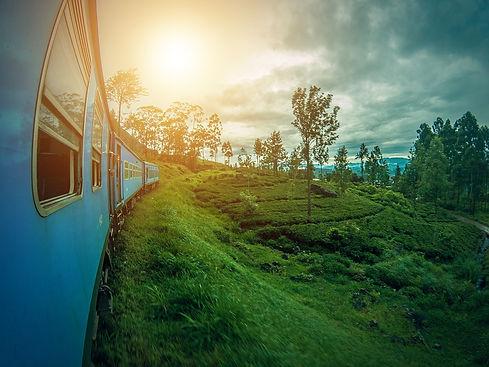 Viaje de Sri Lanka.jpg