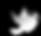OISEAUX-08_edited.png