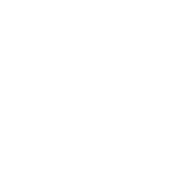 solution innovante white ICON-02-02.png