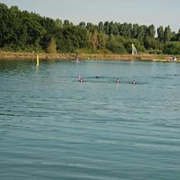 Swim11.jpg