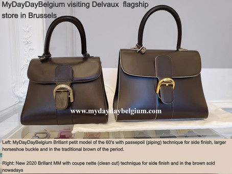 Things no-one will tell you about Delvaux's iconic Brillant Handbag - the chameleon