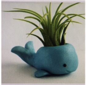 Whale Clay Project Kit.png