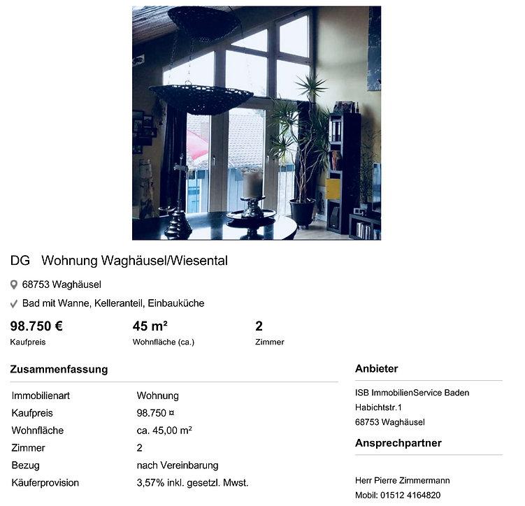 2P2QS42_Wohnung_zum_Kauf_in_Waghaeusel-1