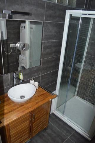 salle de douche - appartement une chambr
