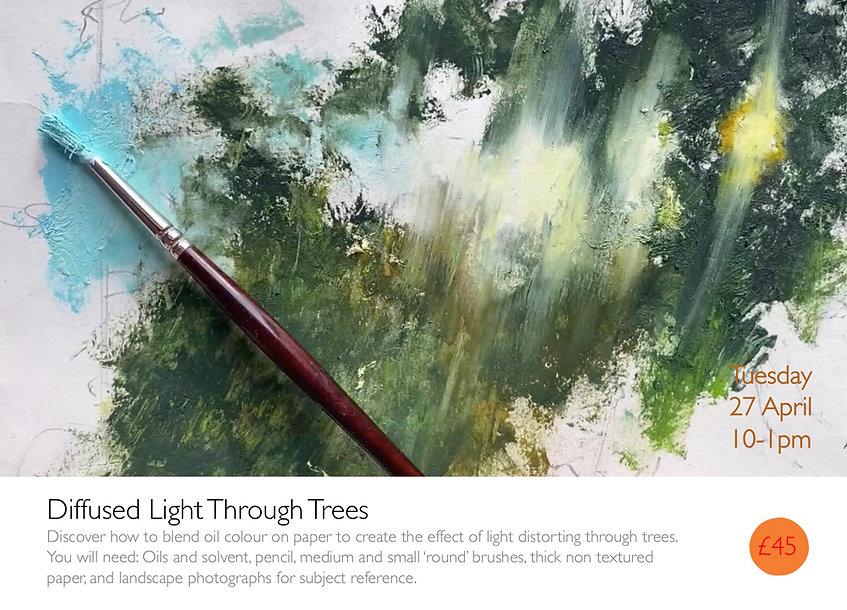 Diffussed Light Through Trees.jpg