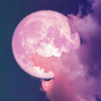lune rose.jpg