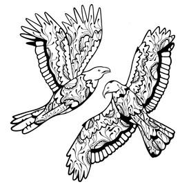 Bird_for_Ryan-05.jpg