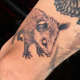 Oppossum Tattoo