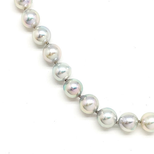 14KT White Gold Gray Akoya Pearl Necklace and Earrings set