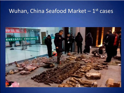Wuhan fish market 1