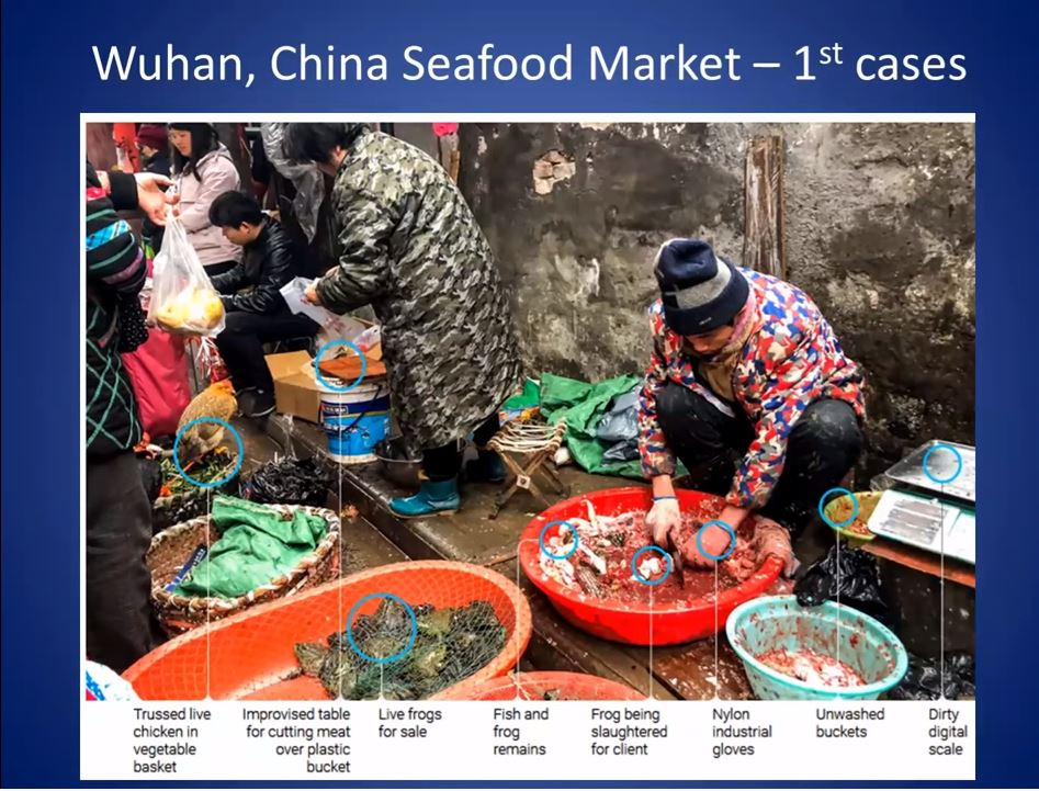 Wuhan fish market 2