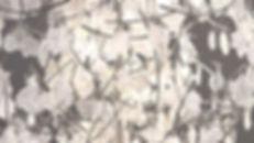 AA0023.new-7.jpg