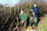 Jim Jones (standing) and Nigel Adams Hedgelaying