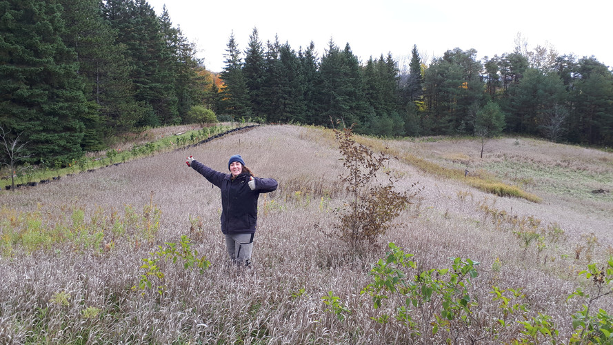 Mount Wolfe Farm Manager Sarah Dolamore is very excited about her new hedge