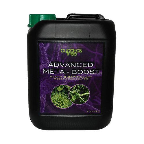 Advanced Meta-Boost