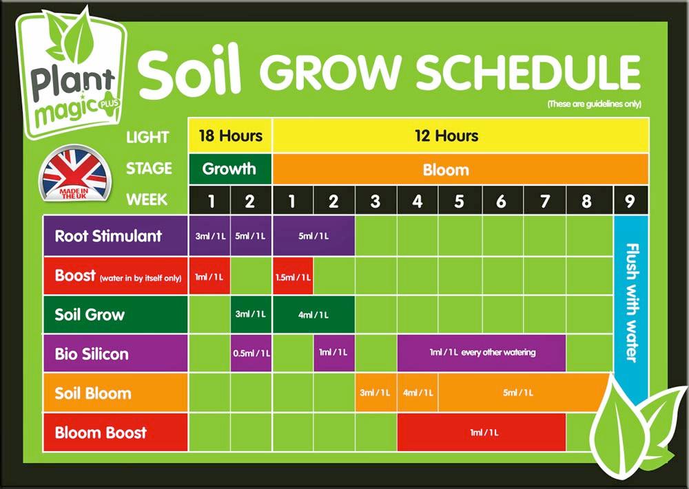 Plant Magic Soil