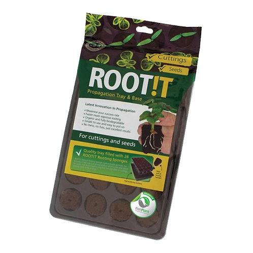 Root!t Sponge Tray (24)