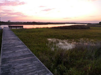 The sunset on the marshes.jpg