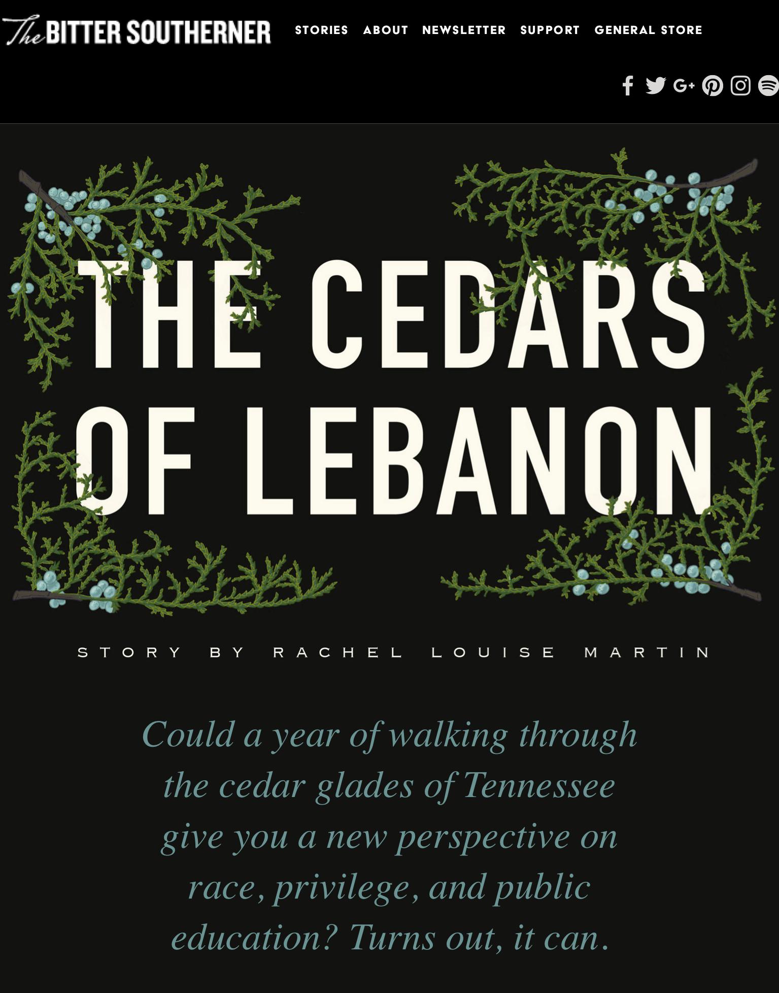 """The Cedars of Lebanon,"" Bitter Southerner"