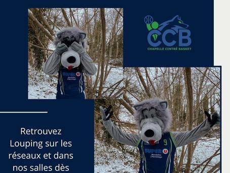 Le CCB a une nouvelle mascotte