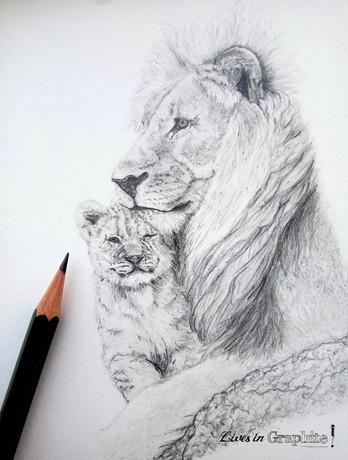 Lion & cub (close up)(watermarked).jpg