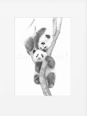 Banner mount (2 pandas).jpg